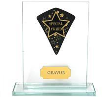"""Glastrophäe inkl. Wimpel """"Special Award"""":   Glastrophäe inkl. schwarzem Wimpel mit Lasergravur """"Special Award""""."""