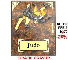 """Holzschild Judo """"-25% Rabatt-Aktion"""":   JUDO-Motiv aus Steingussmaterial  3-färbig bemalt auf einem Wurzelholzschil"""
