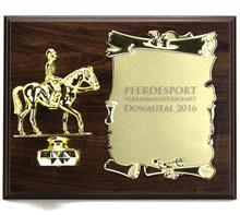 """Holzschild """"Pferdesport"""":   Braunes Holzschild 25x20cm  zum Hängen oder Stellen  mit Figur """"PFERD und"""